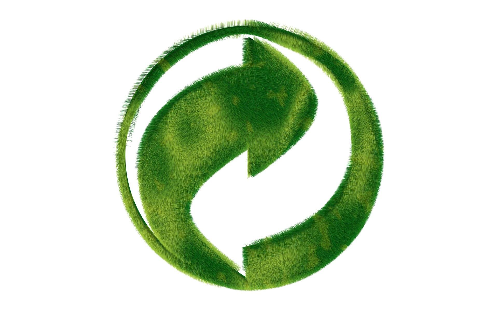 green-trasporto